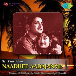 Naadhee Aadajanme (Original Motion Picture Soundtrack)