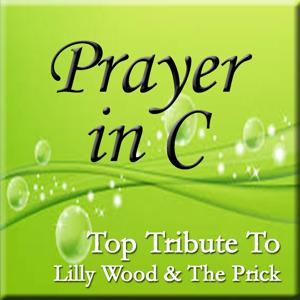Prayer in C (Top Tribute to Lilly Wood & The Prick)