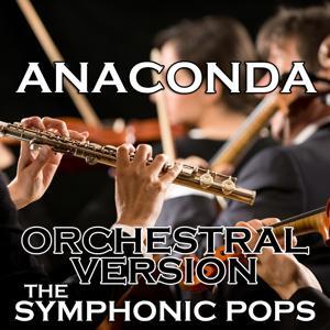 Anaconda (Orchestral Version)