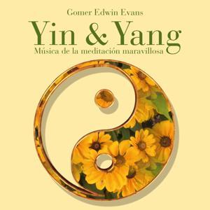 Yin & Yang: Música de la meditación maravillosa
