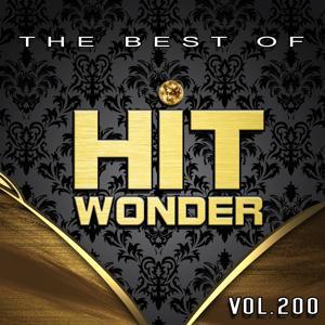 Hit Wonder: The Best of, Vol. 200