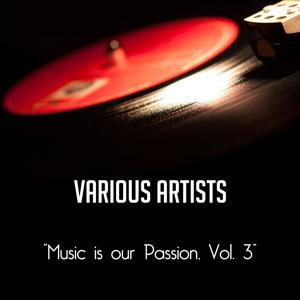 Music Is Our Passion, Vol. 3