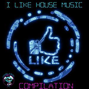 I Like House Music Compilation