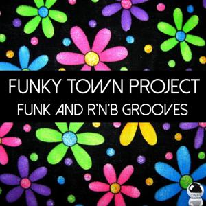 Funky Town Project (Funk and R'n'B Grooves)