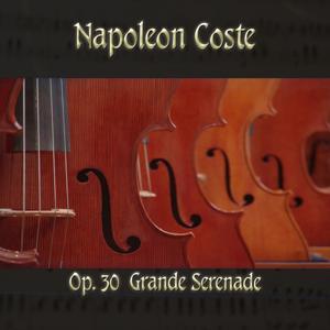 Napoléon Coste: Sérénade pour la guitare, Op. 30 (Midi Version)