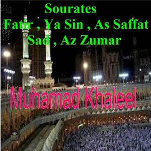 Sourates Fatir, Ya Sin, As Saffat, Sad, Az Zumar (Quran)