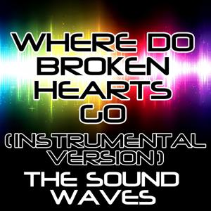 Where Do Broken Hearts Go (Instrumental Version)