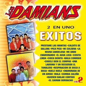 2 en Uno: Exitos de Los Damians, Vol. 2