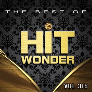 Hit Wonder: The Best Of, Vol. 315