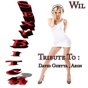 Sexy Bitch: Tribute to David Guetta, Akon