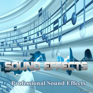 Professional Sound Effects, Vol. 29