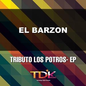 El Barzon (Karaoke Version) [In The Style Of Los Potros]
