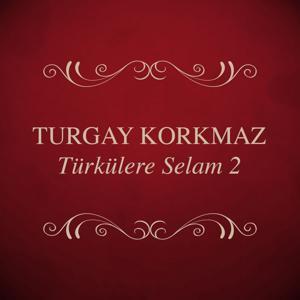 Türkülere Selam, Vol. 2
