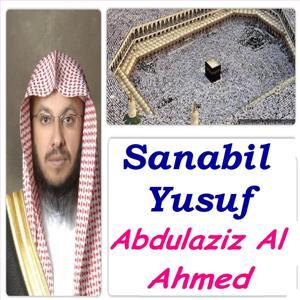 Sanabil Yusuf (Quran)