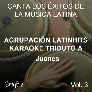 Instrumental Karaoke Series: Juanes, Vol. 3