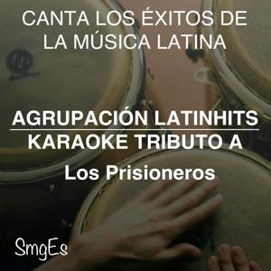 Instrumental Karaoke Series: Los Prisioneros