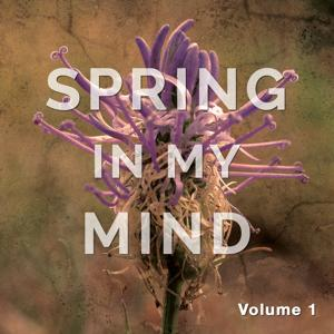 Spring in My Mind, Vol. 1 (Yoga & Meditation Chill out Tunes)