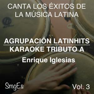 Instrumental Karaoke Series: Enrique Iglesias, Vol. 3