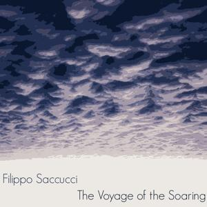 Ambient Music: The Voyage of the Soaring