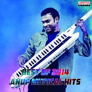 Best of 2014:  Anup Musical Hits