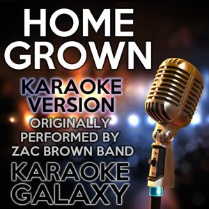 Homegrown (Karaoke Version) (Originally Performed By Zac Brown Band)