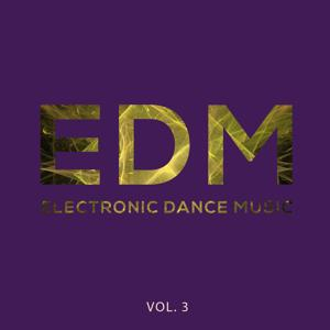EDM - Electronic Dance Music, Vol. 3 (Best of Electronic House Music)