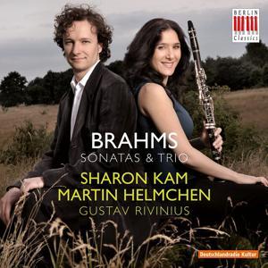 Brahms: Sonatas & Trios
