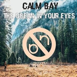 The Ocean in Your Eyes