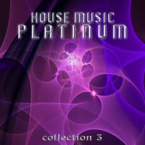 House Music Platinum - Collection 3
