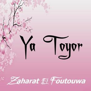 Ya Toyor (Quran)