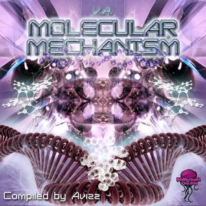 Molecular Mechanism