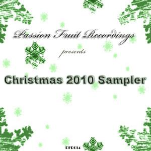 Christmas 2010 Sampler