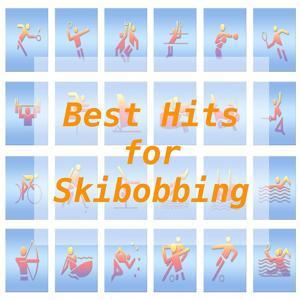 Best Hits for Skibobbing
