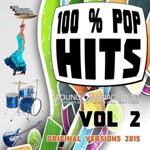 100% Pop Hits, Vol. 2