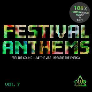 Festival Anthems, Vol. 7