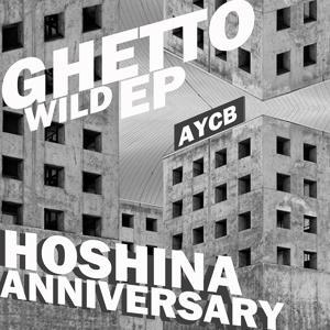 Ghetto Wild