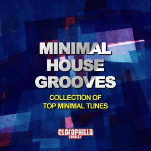 Minimal House Grooves (Collection of Top Minimal Tunes)