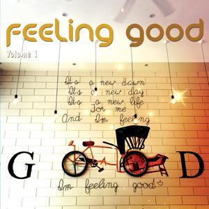 Feeling Good, Vol. 1 (Positive Chill Grooves)