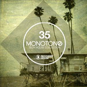 Monotone, Vol. 35 - Tech House Selection