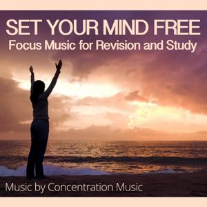 Refreshing Focus Music - Perfect for Yoga & Study