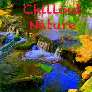 Chillout Nature