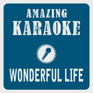 Wonderful Life (Karaoke Version) (Originally Performed By Black)
