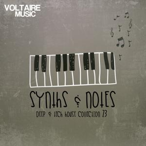 Synths and Notes 23