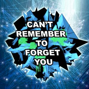 Can't Remember To Forget You (Dubstep Remix)
