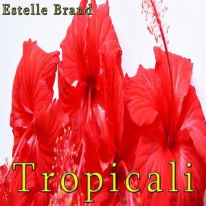 Tropicali (Remake Remix to Darius & Finlay)