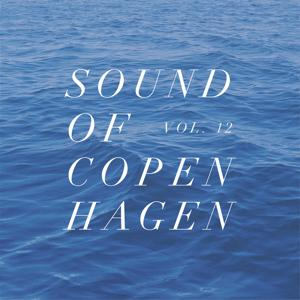 Sound Of Copenhagen Vol. 12