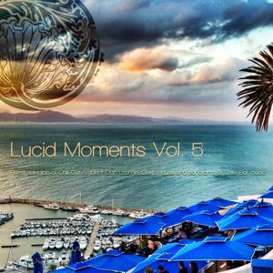 Lucid Moments, Vol. 5 - Finest Selection of Chill out Ambient Club Lounge, Deep House and Panorama of Cafe Bar Music