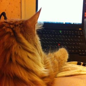 I'm a Cat! (feat. Johnnie Johnson & Sergey Korsikov)