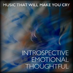 Introspective Emotional Thoughtful