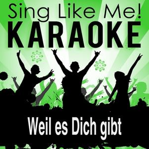 Weil es Dich gibt (2001 Edit) [Karaoke Version] (Originally Performed By Peter Maffay)